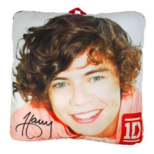 One Direction 'Harry' 10 inch Collectible Pillow