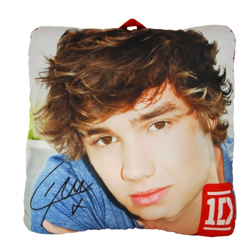 One Direction 'Liam' 10 inch Collectible Pillow