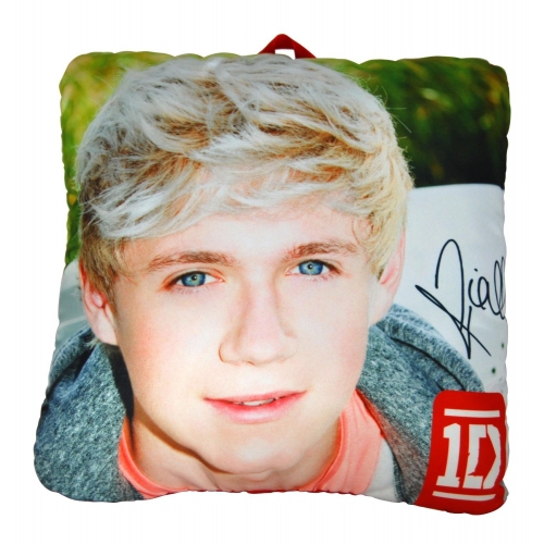 One Direction 'Niall' 10 inch Collectible Pillow
