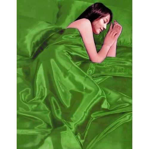 Satin Grass 6pc Gaveno Cavailia Complete Set Bedding King Duvet Cover