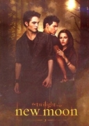 Twilight New Moon Colour Panel Fleece Blanket Throw