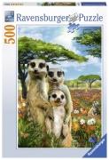 Mischievous Meerkats 500 Piece Jigsaw Puzzle Game