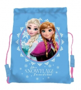 Disney Frozen 'Snowflake Sisters' School Trainer Bag