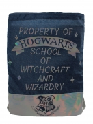 Harry Potter Blue & Silver Kids Drawstring School Pe Gym Trainer Bag