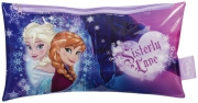 Disney Frozen Elsa Anna 'Sisterly Love' Large Flat Pencil Case Stationery