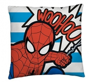 Spider Man Printed Cushion